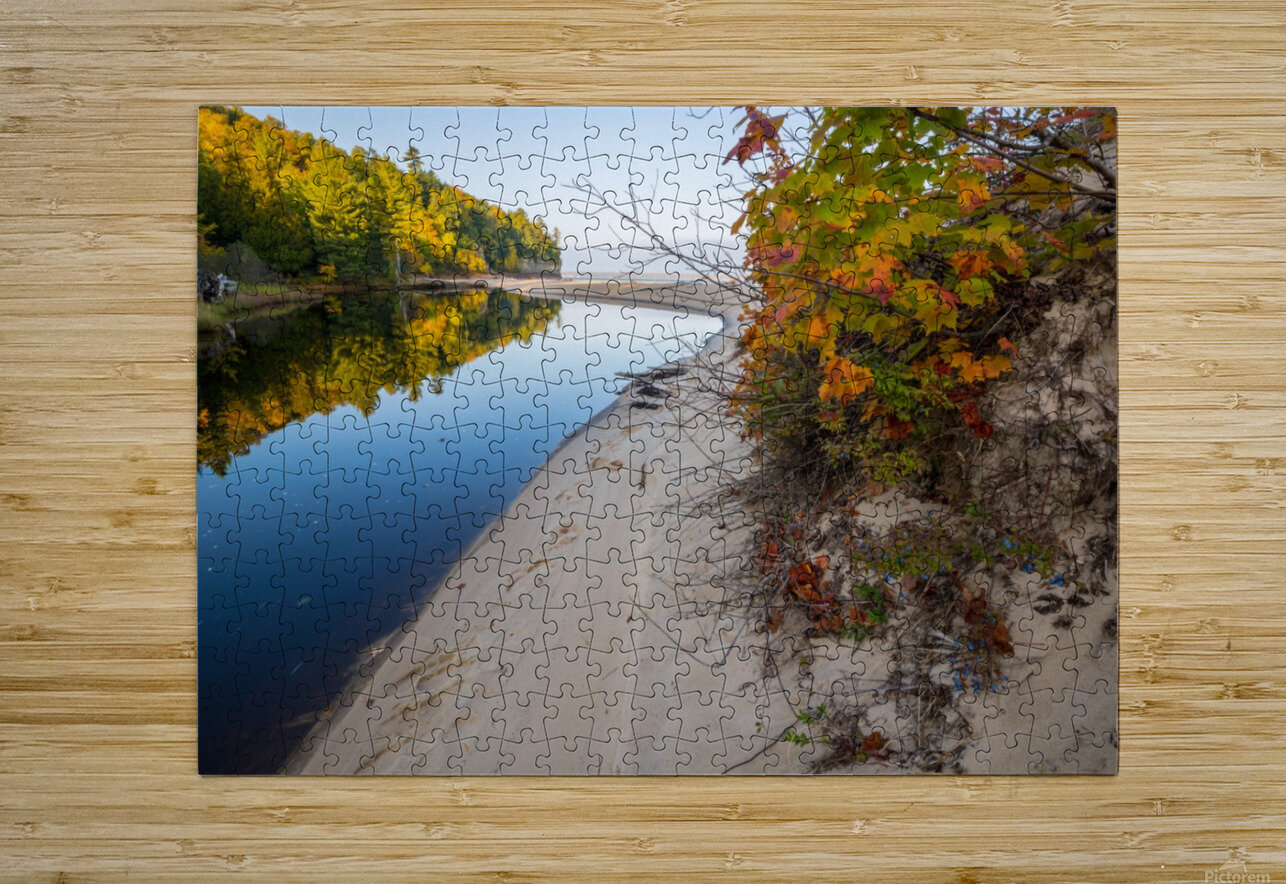 Blueberries ap 2526  HD Metal print with Floating Frame on Back