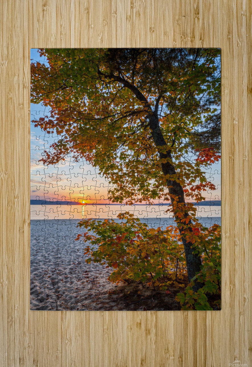Sunset ap 2574  HD Metal print with Floating Frame on Back