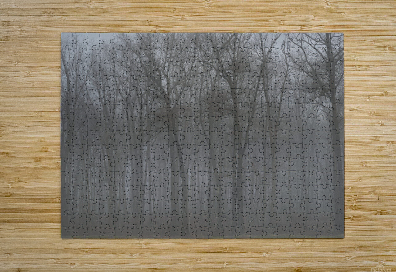 Treeline & Buck apmi 1548  HD Metal print with Floating Frame on Back