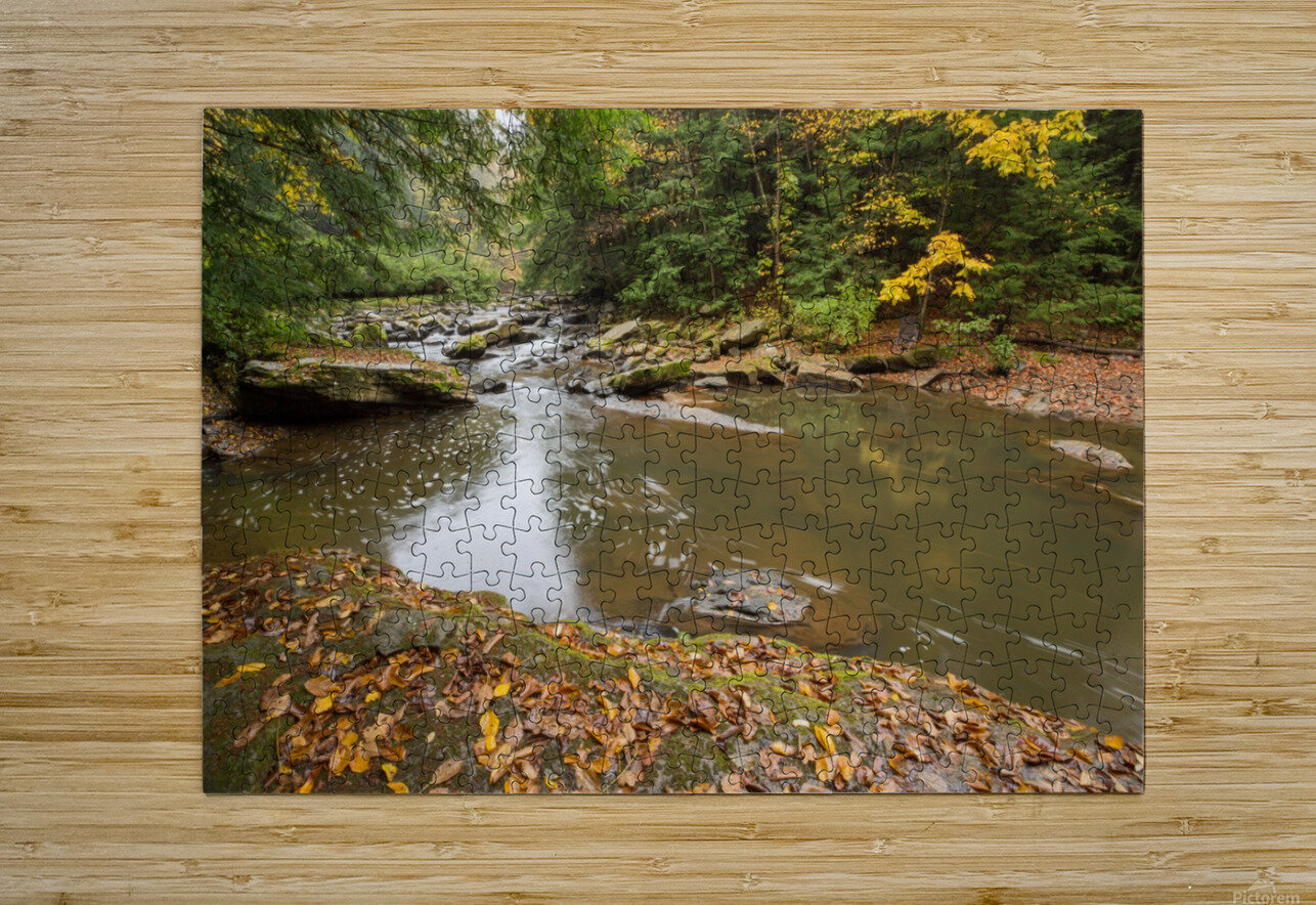 Fall Color ap 2453  HD Metal print with Floating Frame on Back