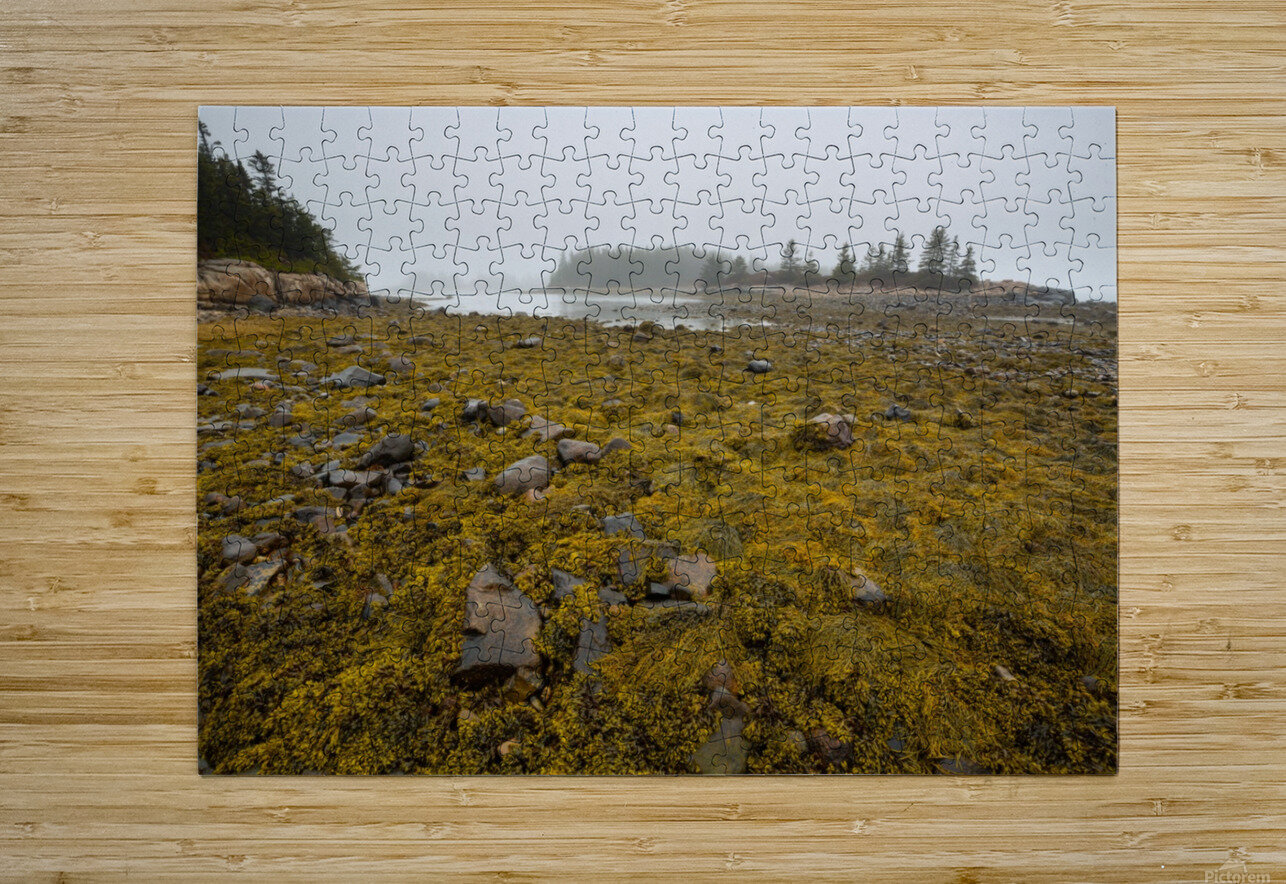 Low Tide ap 2271  HD Metal print with Floating Frame on Back
