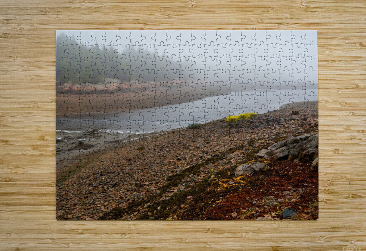 Low Tide ap 2296  HD Metal print with Floating Frame on Back