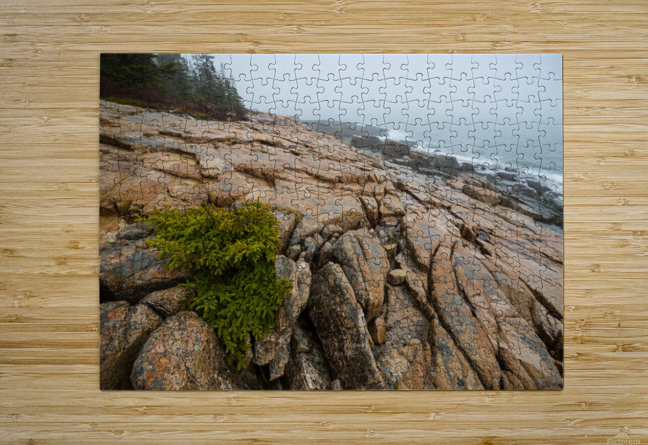 Lone Pine ap 2286  HD Metal print with Floating Frame on Back