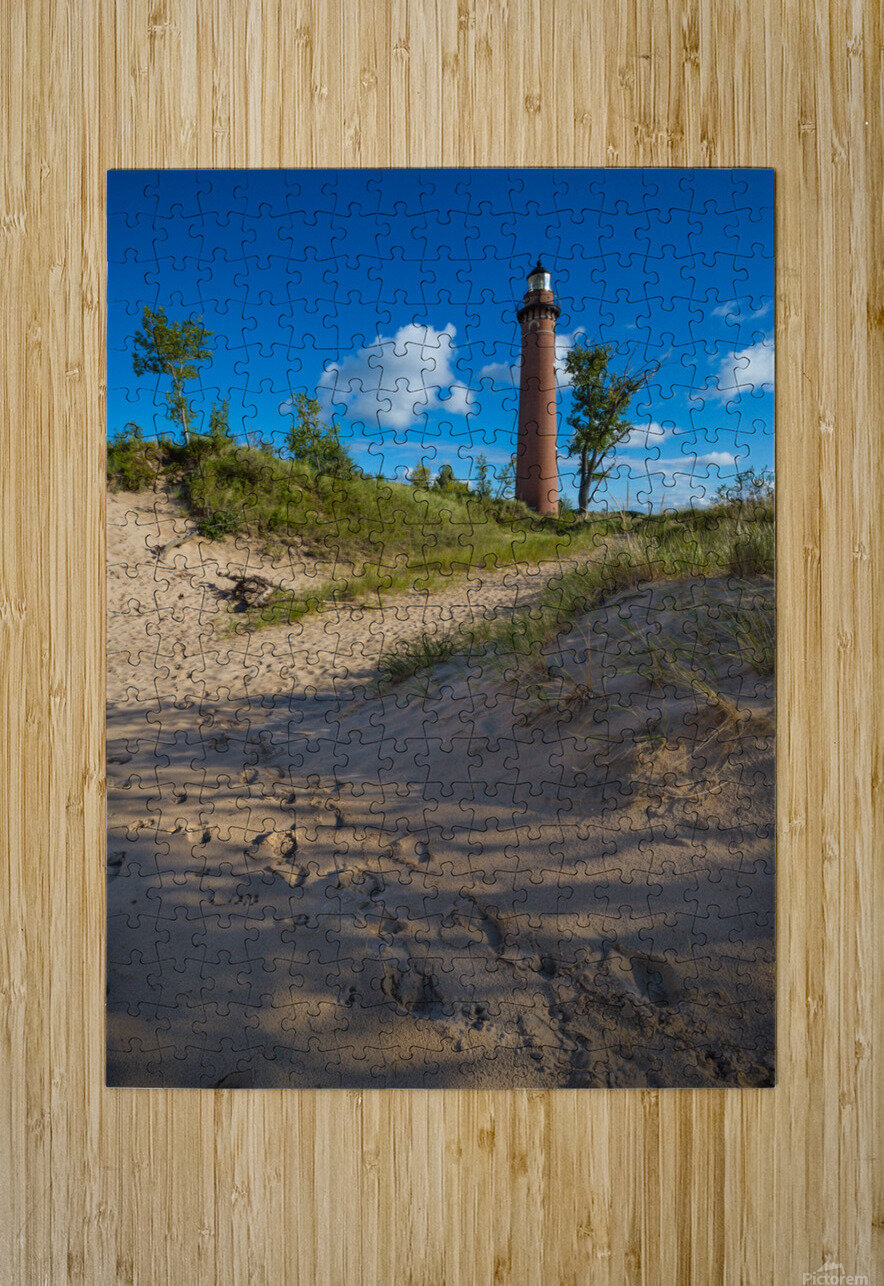 Little Sable ap 2442  HD Metal print with Floating Frame on Back