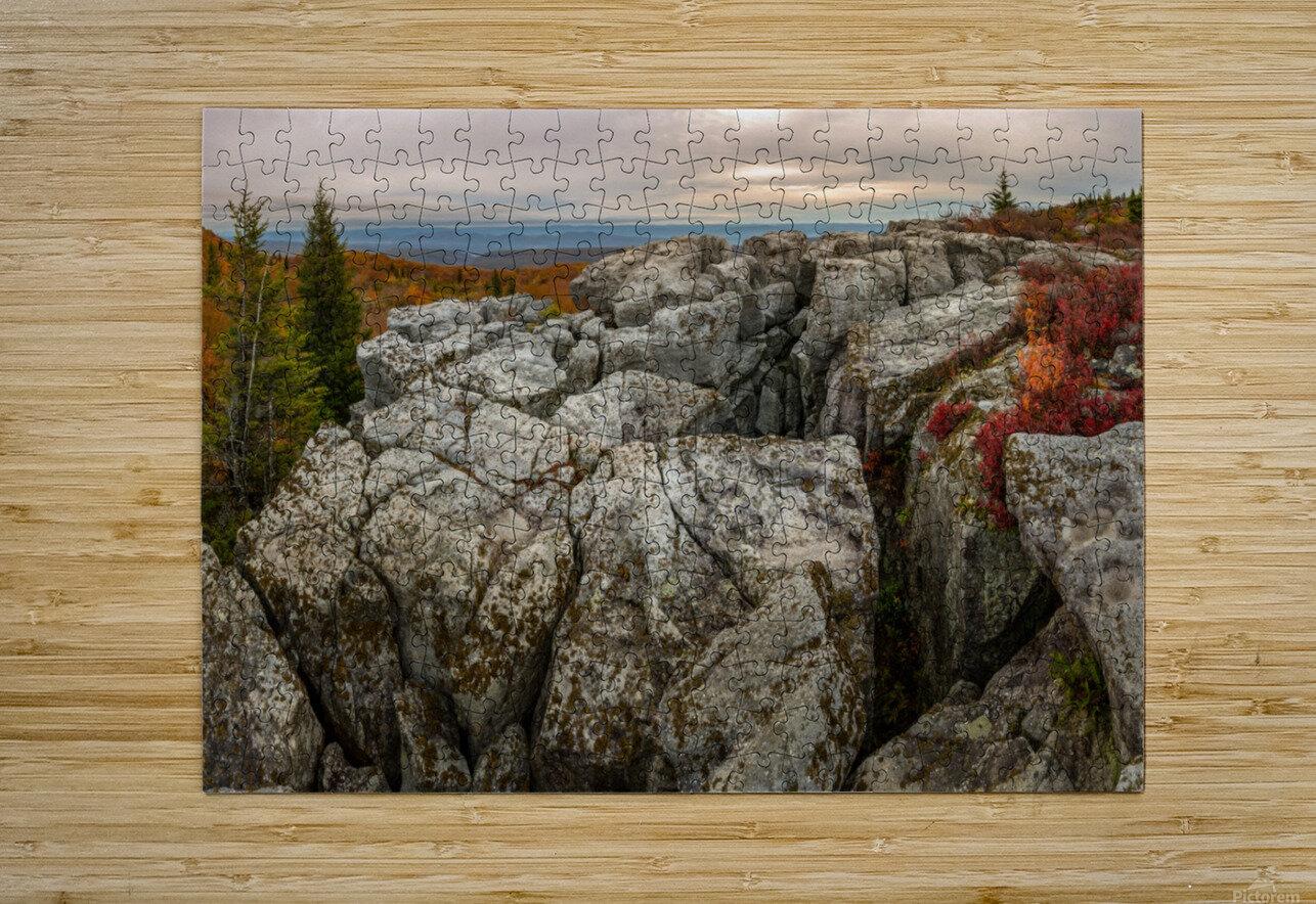 Bear Rocks Preserve apmi 1791  HD Metal print with Floating Frame on Back