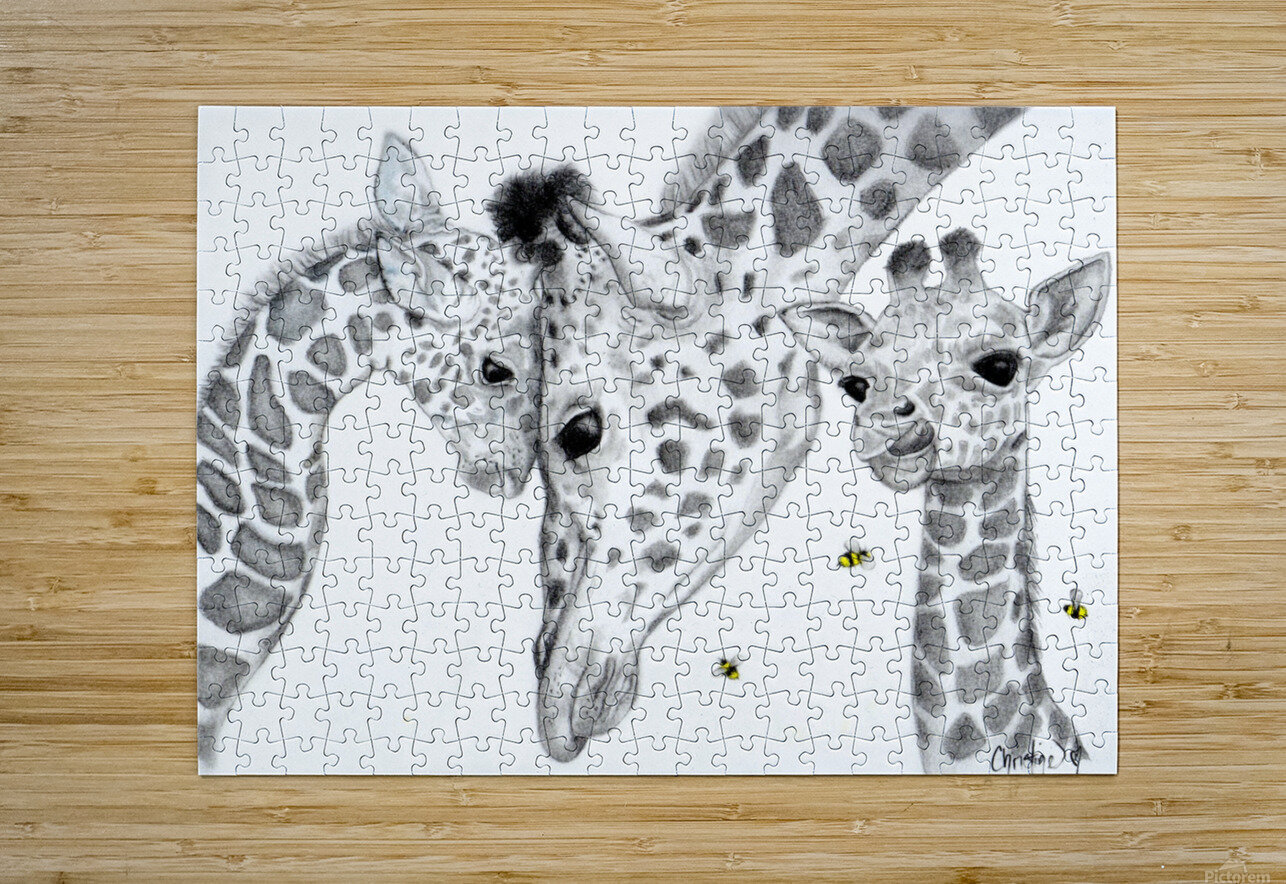 Giraffe Family   HD Metal print with Floating Frame on Back