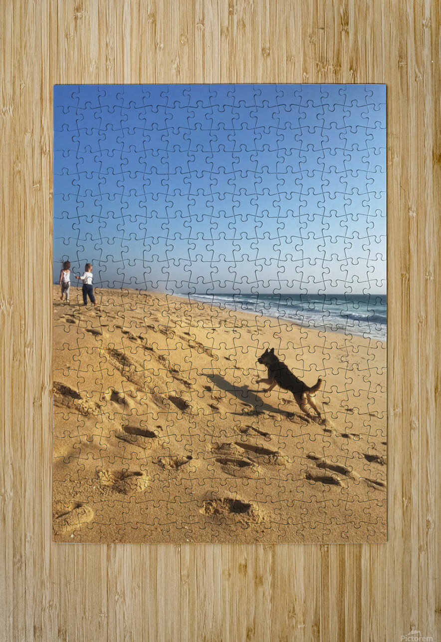 Dog and kids on the beach in Portugal  HD Metal print with Floating Frame on Back