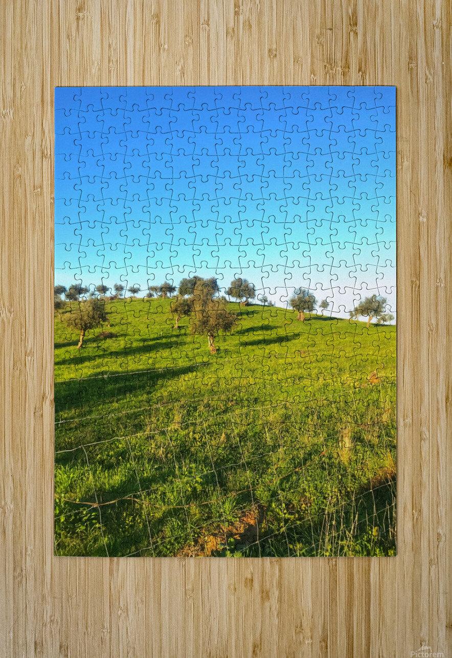 Landscape of central Portuga  HD Metal print with Floating Frame on Back