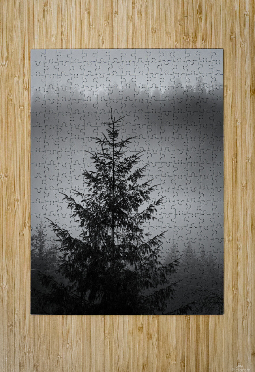 Lonliest Tree  HD Metal print with Floating Frame on Back