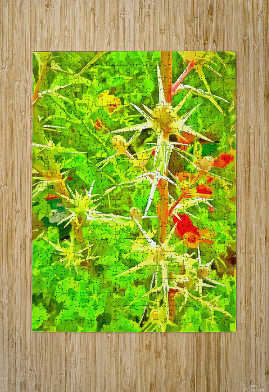 Eryngium Pop Art Style  HD Metal print with Floating Frame on Back