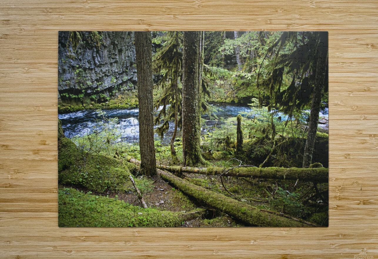 The Mckenzie River  HD Metal print with Floating Frame on Back