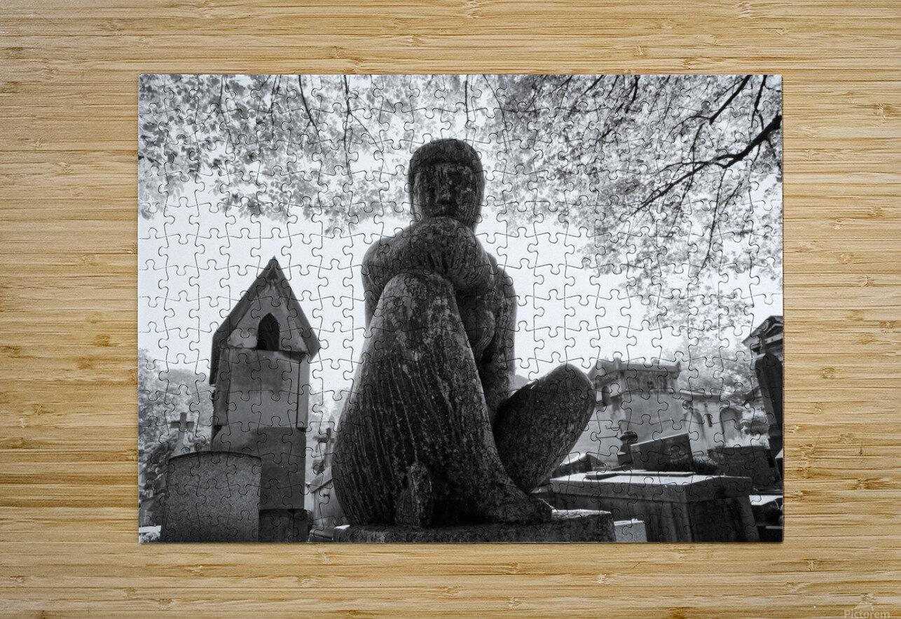 Pere-Lachaise statue  Impression métal HD avec cadre flottant sur le dos