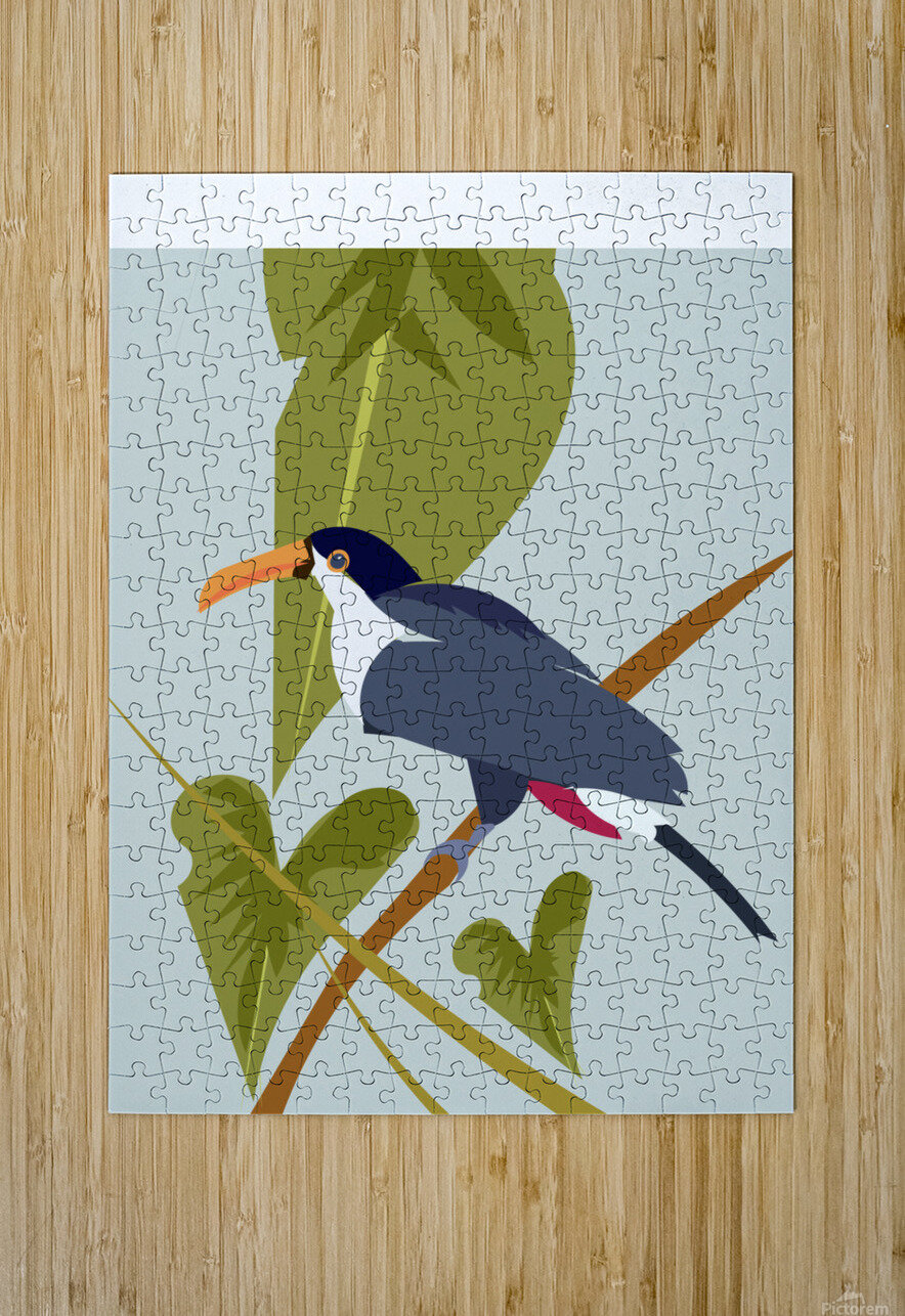 Toucanish  HD Metal print with Floating Frame on Back