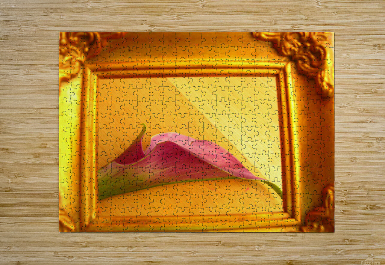 Gilded Lilly   HD Metal print with Floating Frame on Back