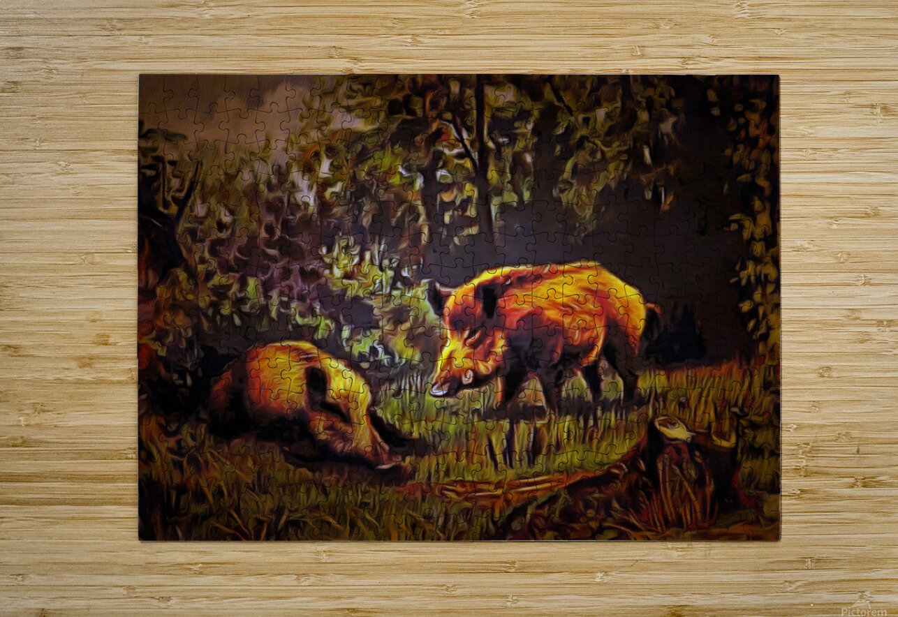 Wild Boars  HD Metal print with Floating Frame on Back