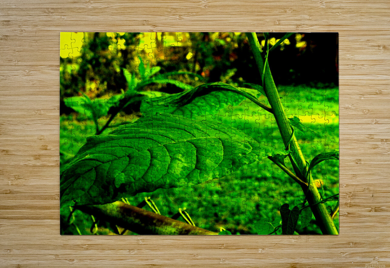 sofn EE42975E  HD Metal print with Floating Frame on Back