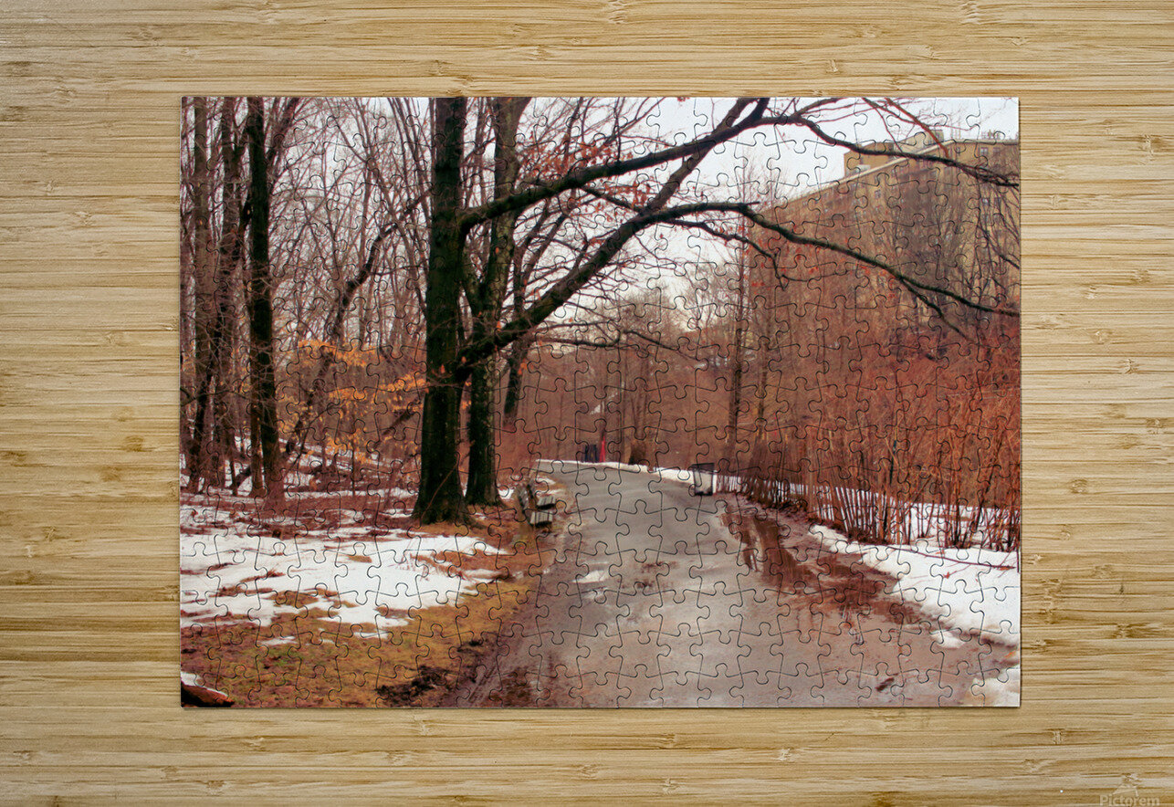 Park Path   HD Metal print with Floating Frame on Back