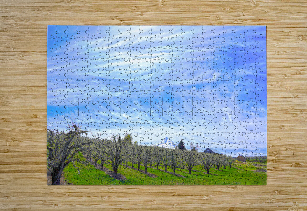 Spring in the Orchard Hood River Valley Oregon  HD Metal print with Floating Frame on Back