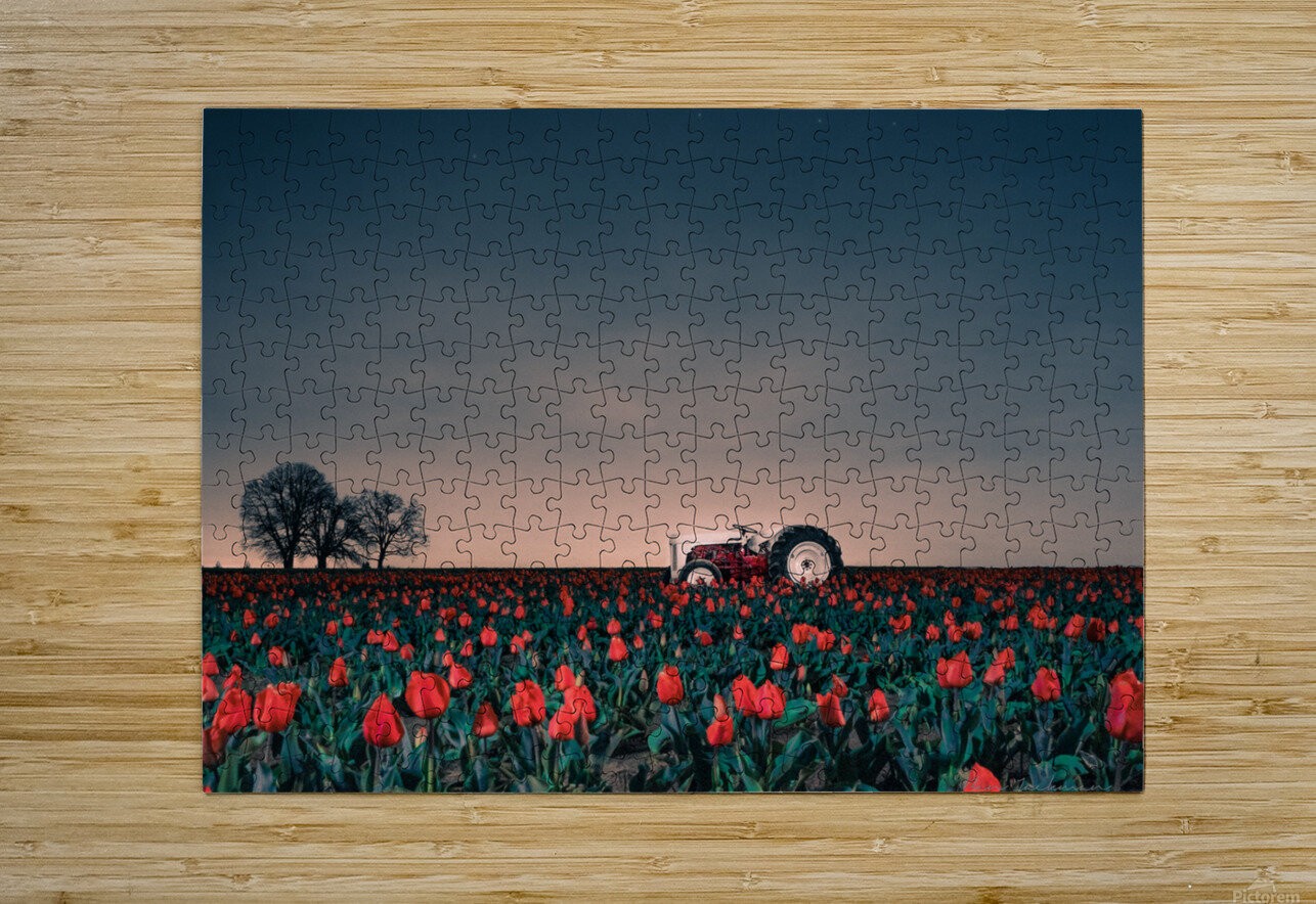 Tractors & Tulips  HD Metal print with Floating Frame on Back