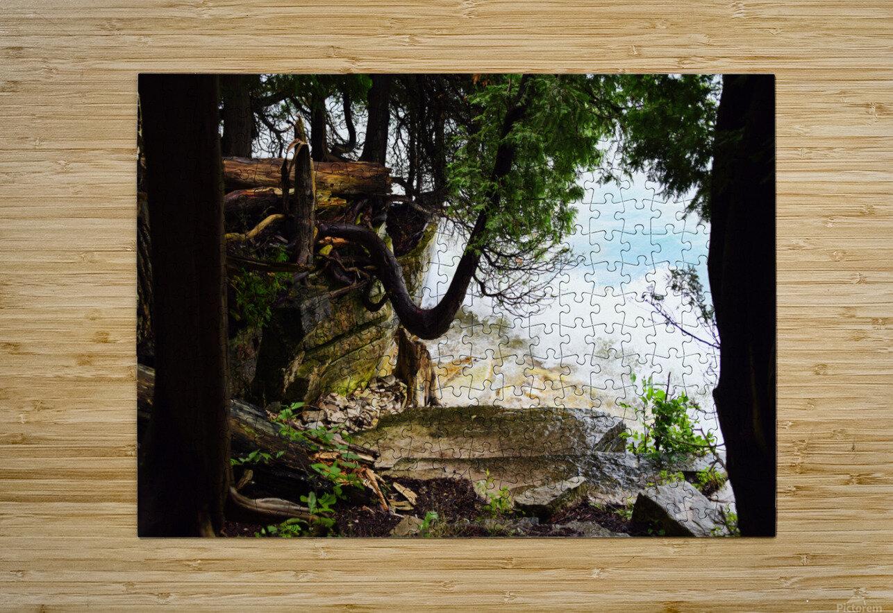 Enchanted Embankment  HD Metal print with Floating Frame on Back