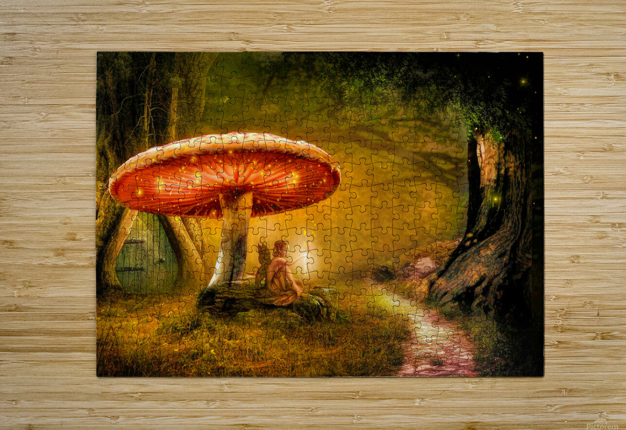 Fairy Ring  HD Metal print with Floating Frame on Back