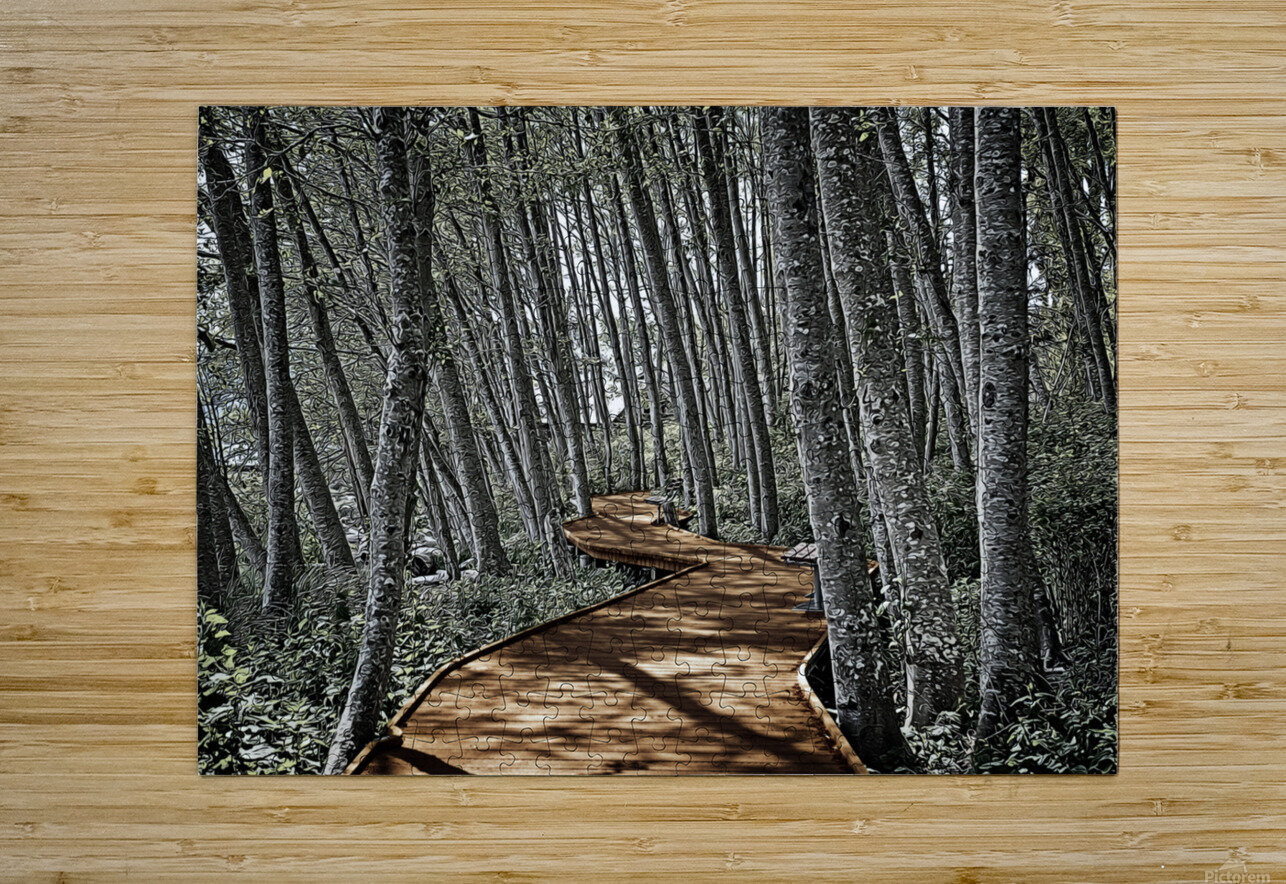 Boardwalk in the Woods  HD Metal print with Floating Frame on Back