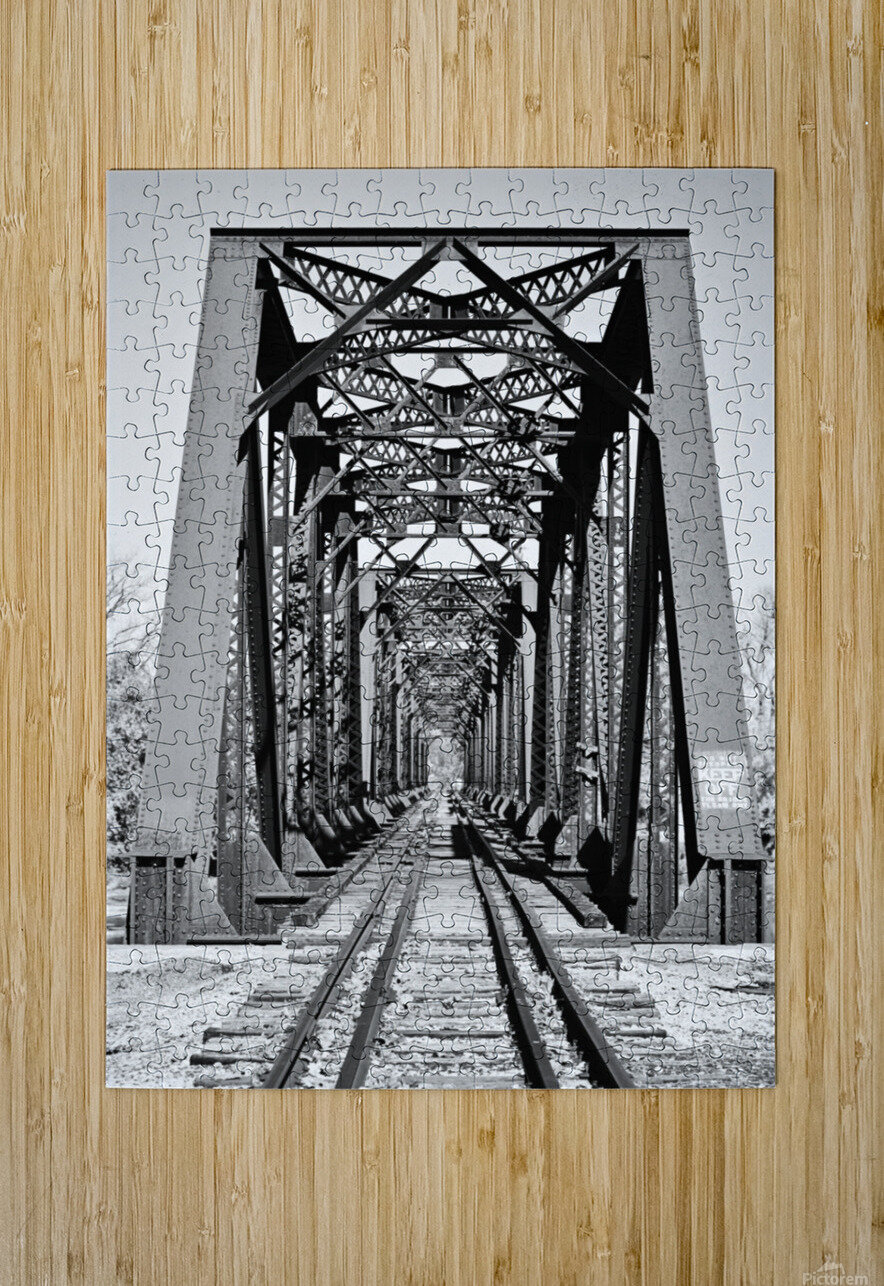 The Trestle  HD Metal print with Floating Frame on Back