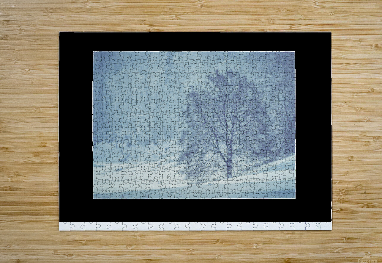 Snowy landscape  HD Metal print with Floating Frame on Back