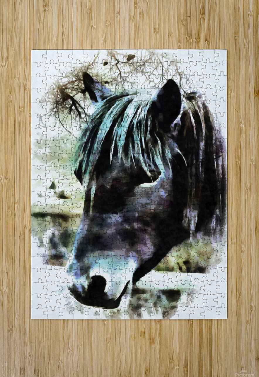 Horse Spirit Guide  HD Metal print with Floating Frame on Back
