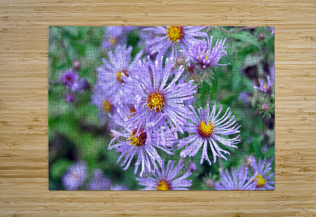 0056  HD Metal print with Floating Frame on Back