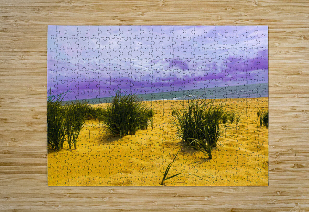 Dunes at Cape May  HD Metal print with Floating Frame on Back