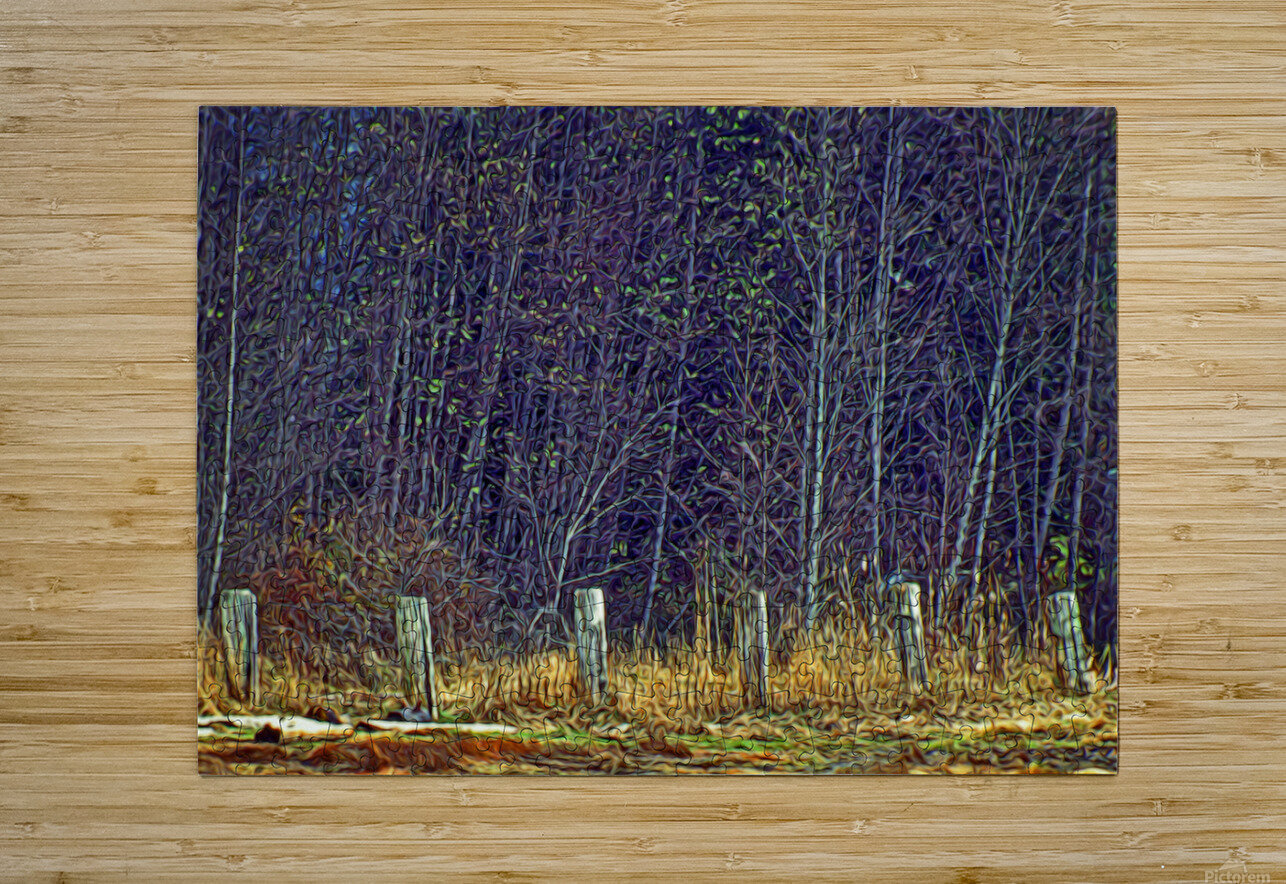 Weathered Fence Posts  HD Metal print with Floating Frame on Back