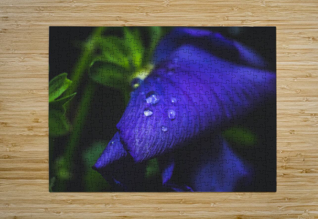 Drops With Blue  HD Metal print with Floating Frame on Back