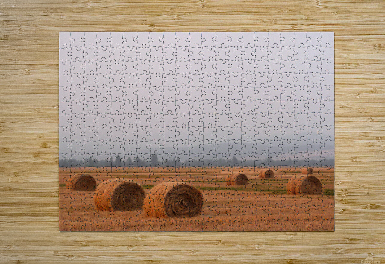 Haybales in a Haze  HD Metal print with Floating Frame on Back