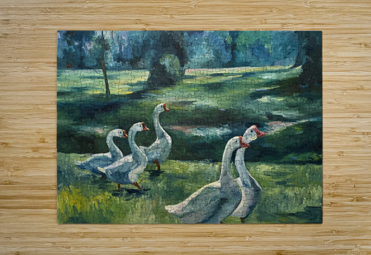 Geese at St. Francisville  HD Metal print with Floating Frame on Back