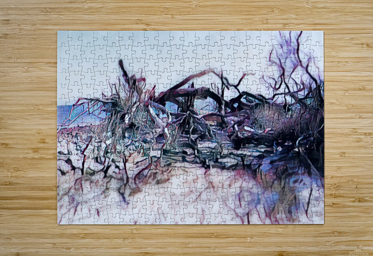 Driftwood Beach  HD Metal print with Floating Frame on Back