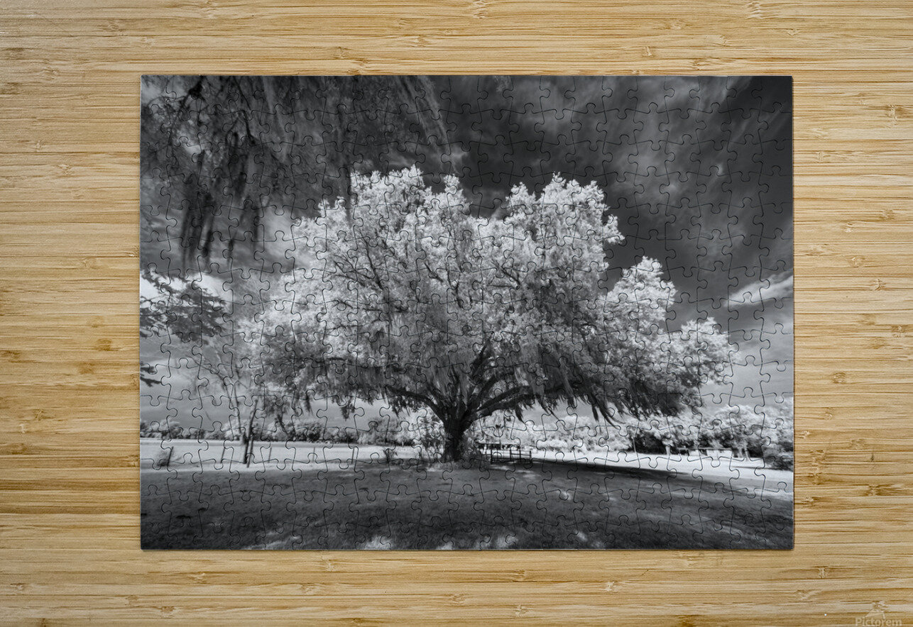 Gentle breeze  HD Metal print with Floating Frame on Back