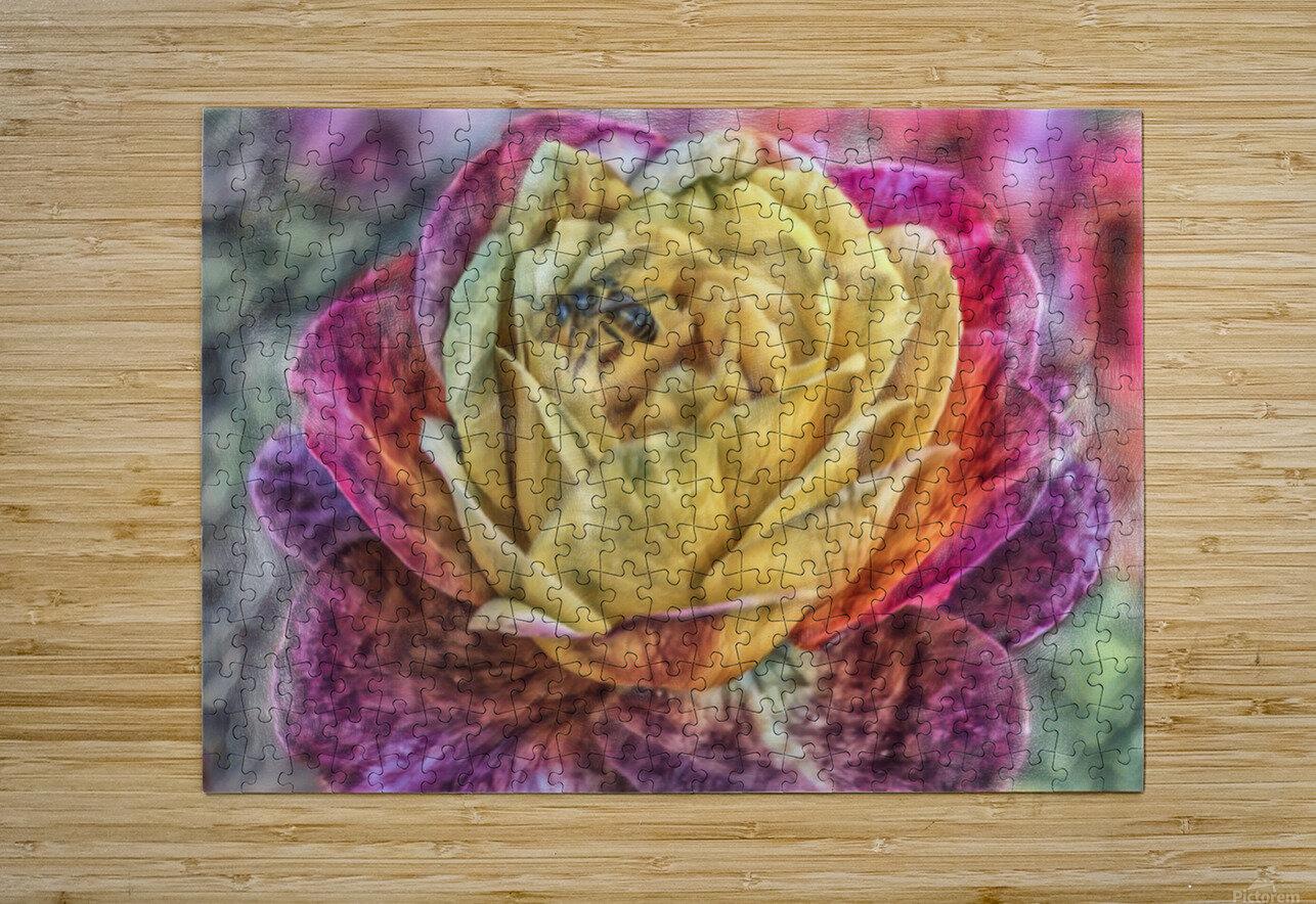 Beezy Blossom  HD Metal print with Floating Frame on Back