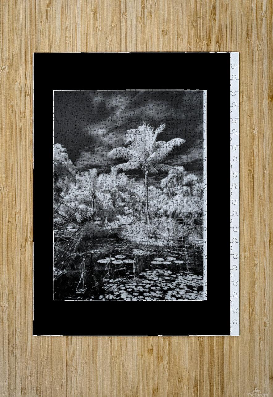 McKee Gardens  Vero Beach  Florida  HD Metal print with Floating Frame on Back