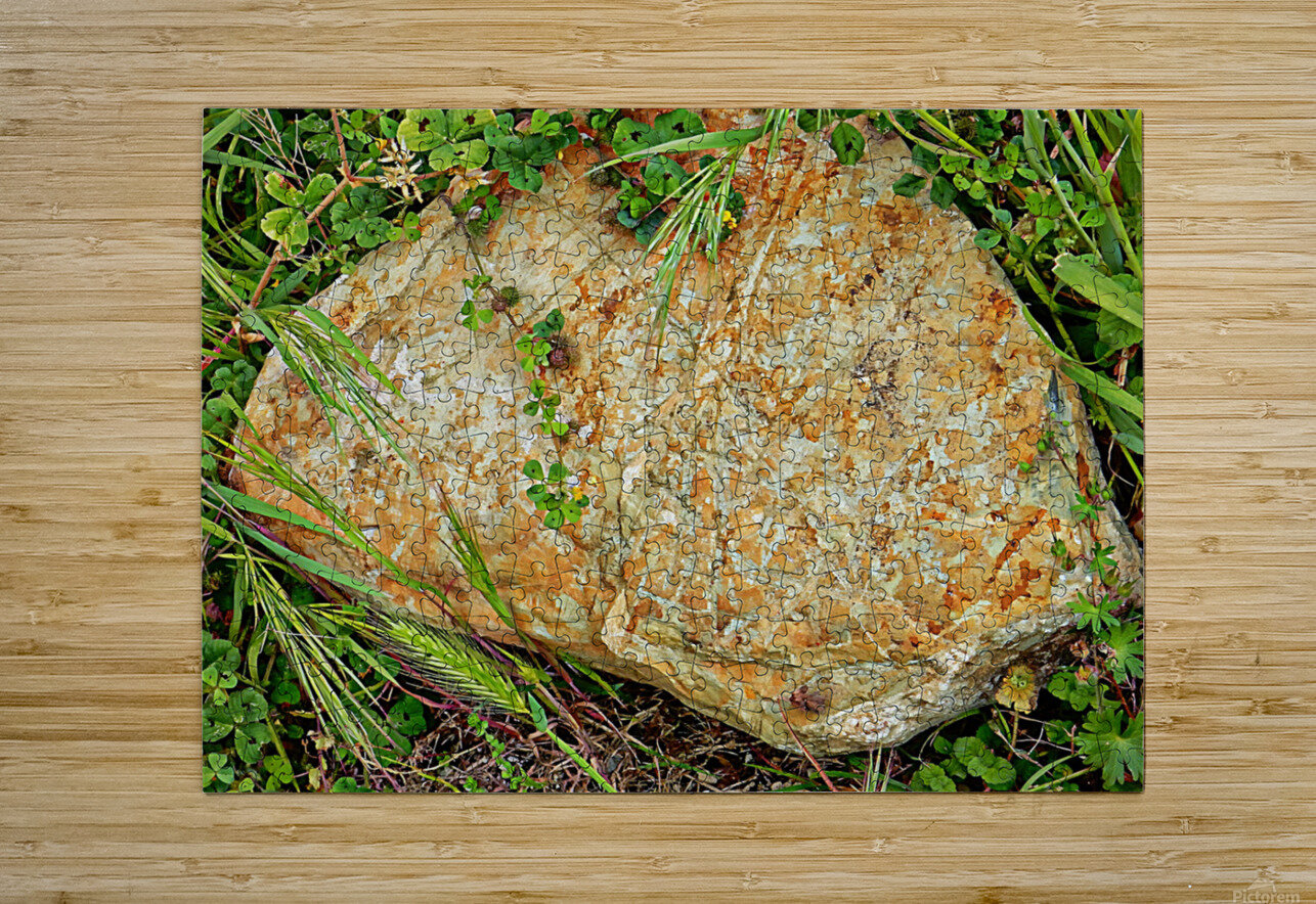 Brown Sandstone Rock With Grass  HD Metal print with Floating Frame on Back