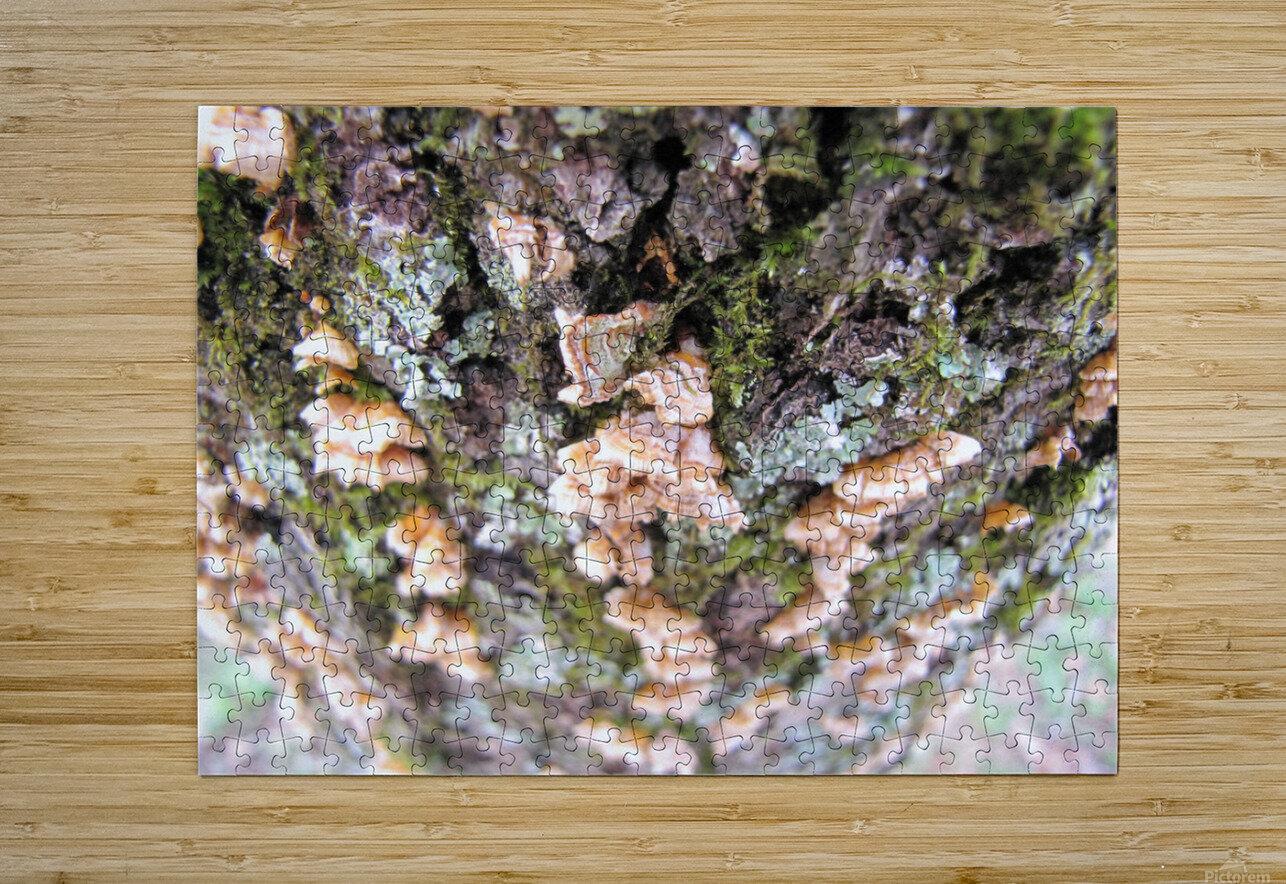 Nature  Impression métal HD avec cadre flottant sur le dos