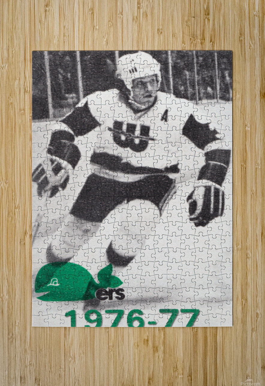 1976 New England Whalers Art  HD Metal print with Floating Frame on Back