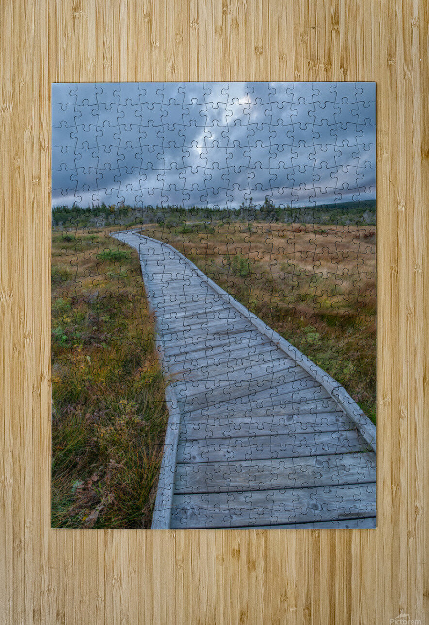 Autumn Walk  HD Metal print with Floating Frame on Back