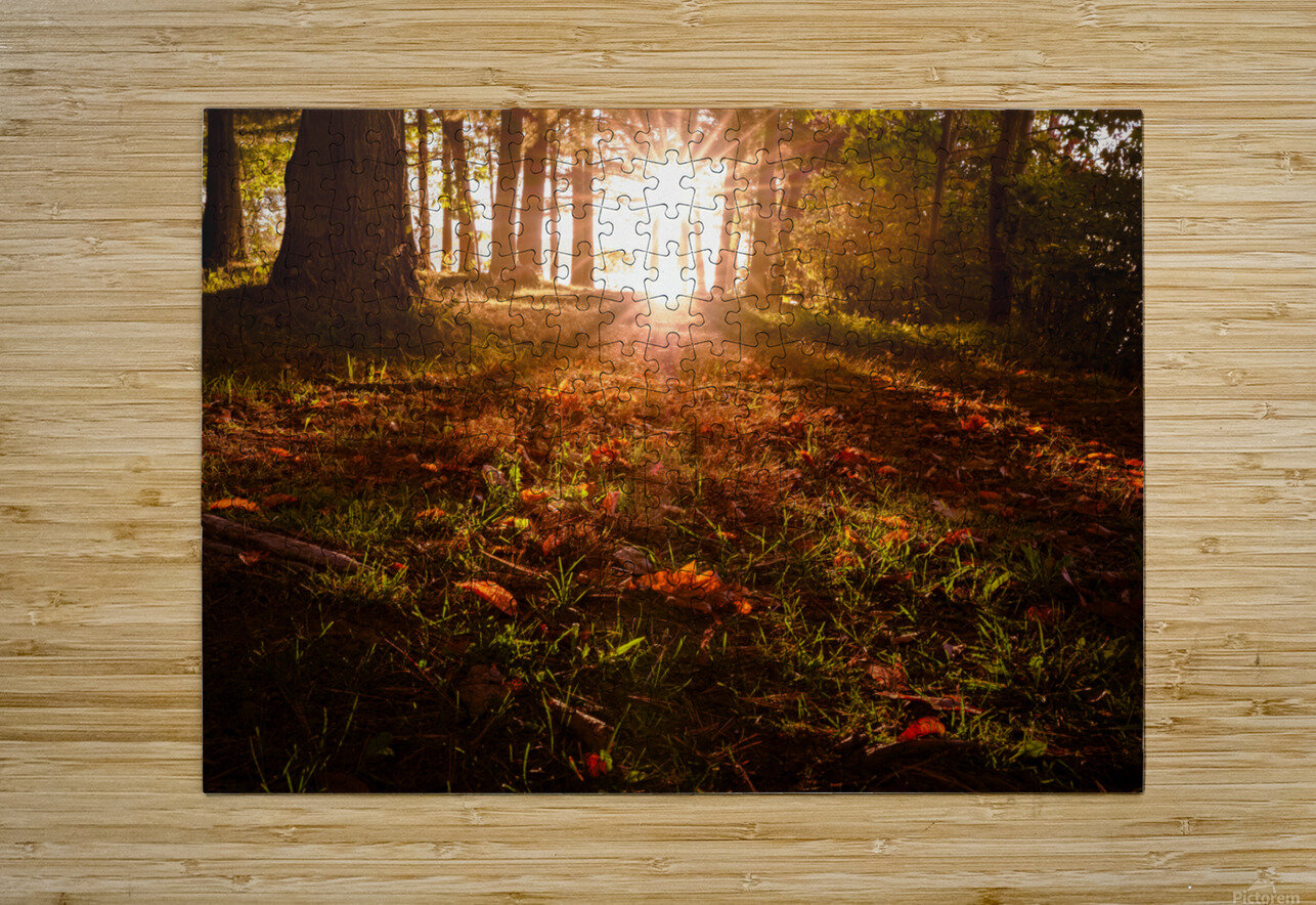 Autumn Sunrise  HD Metal print with Floating Frame on Back