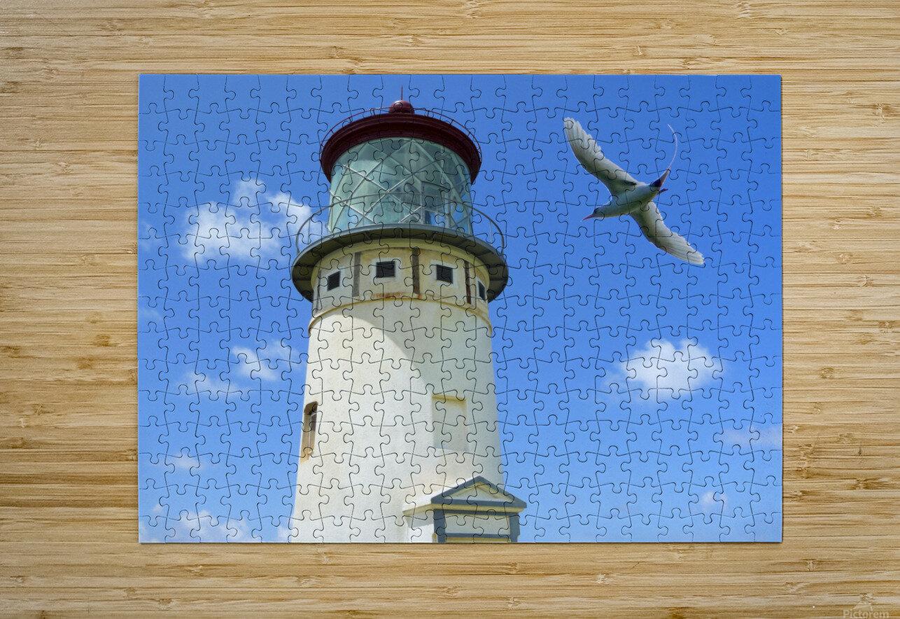 Kilauea Lighthouse and Wildlife Refuge on Kauai  HD Metal print with Floating Frame on Back