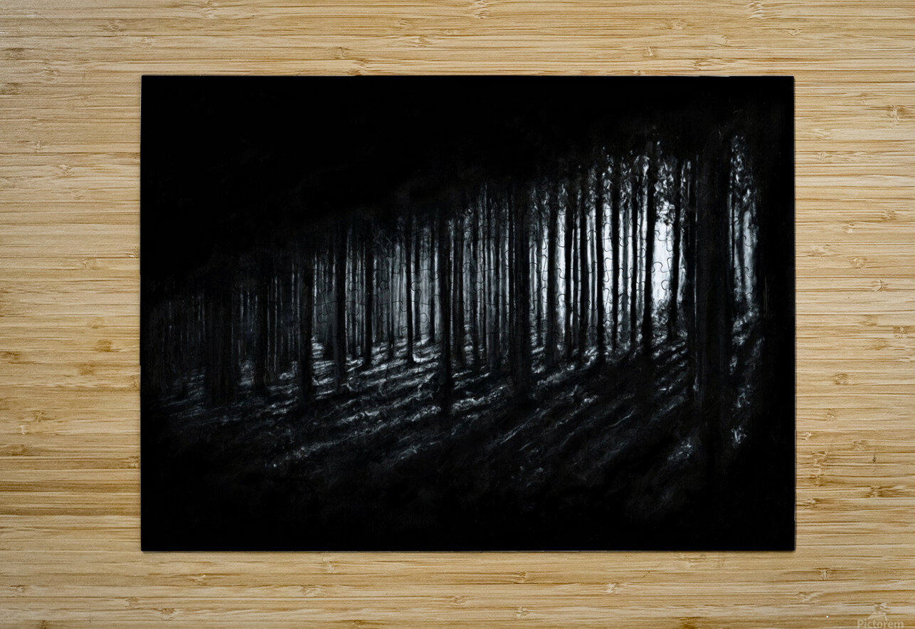 In the Woods  HD Metal print with Floating Frame on Back