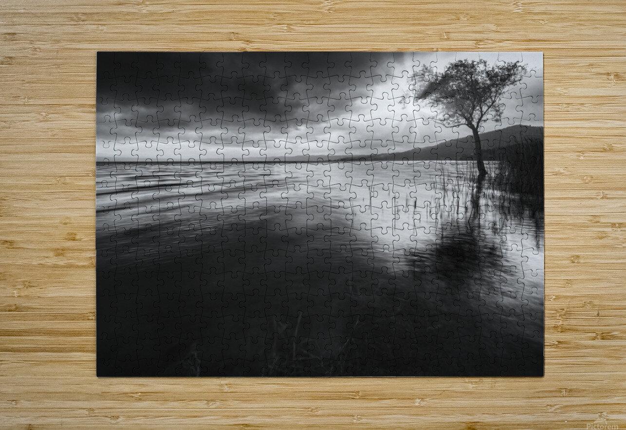 Sugar  HD Metal print with Floating Frame on Back