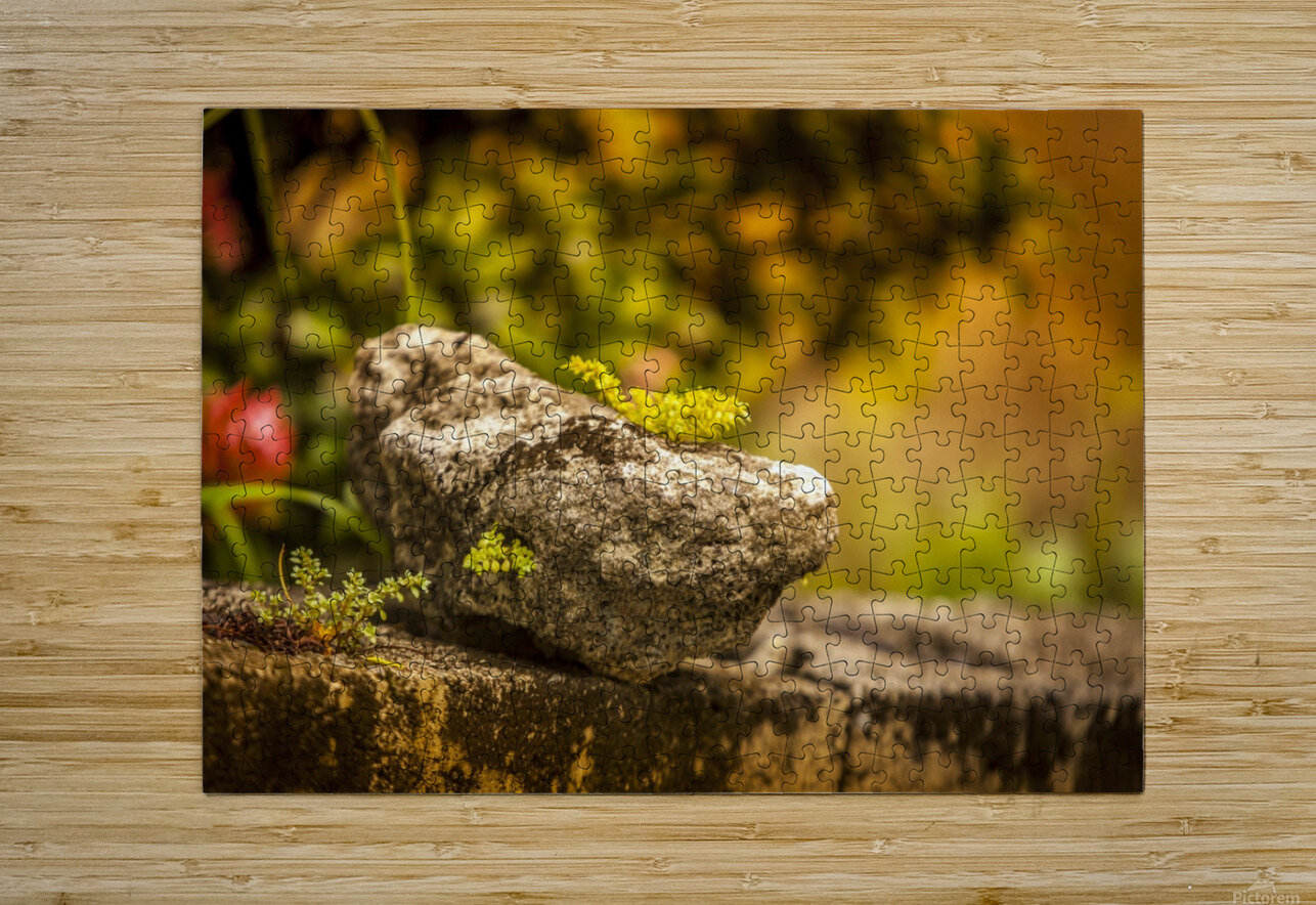 IMG_1288  HD Metal print with Floating Frame on Back