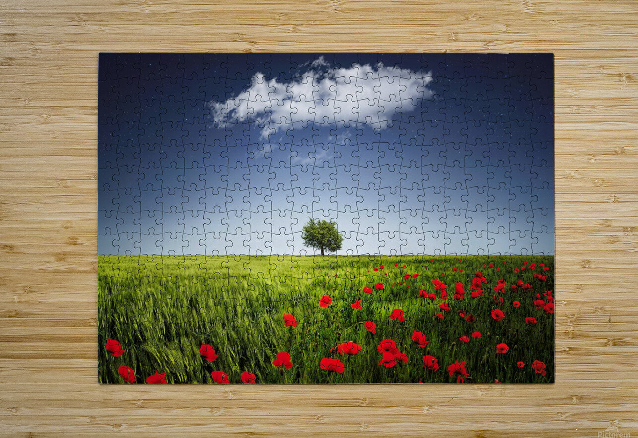 Lone tree a poppies field  HD Metal print with Floating Frame on Back