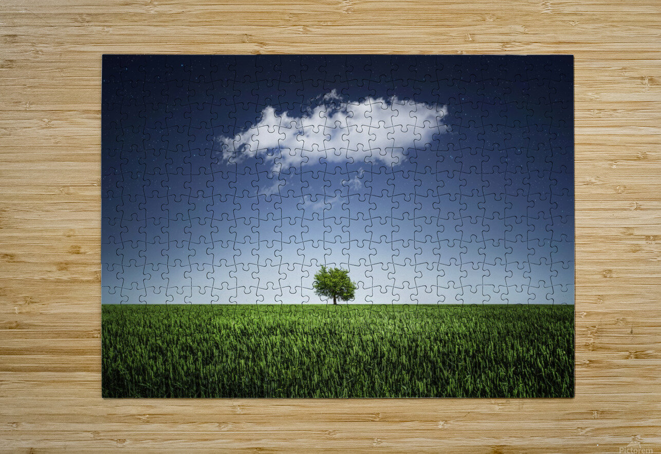 A tree covered with clouds  HD Metal print with Floating Frame on Back